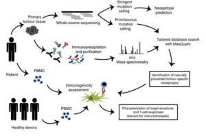 Bioinformatics applications in cancer immunotherapy - Seven