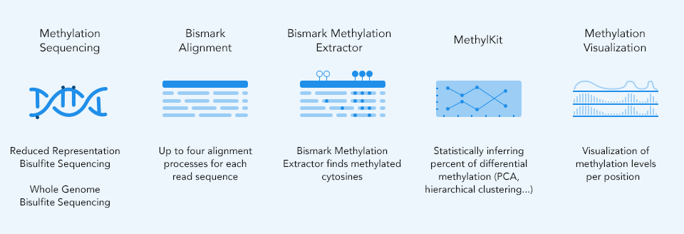 Differential Methylation Analysis - Seven Bridges
